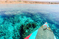 Jordan. Japanese Gardens is a popular beach and dive site south of Aqaba city, with beautiful coral reefs.