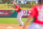 11 March 2013: Washington Nationals shortstop Ian Desmond in action during a Spring Training game against the Atlanta Braves at Space Coast Stadium in Viera, Florida. The Braves defeated the Nationals 7-2 in Grapefruit League play. Mandatory Credit: Ed Wolfstein Photo *** RAW (NEF) Image File Available ***
