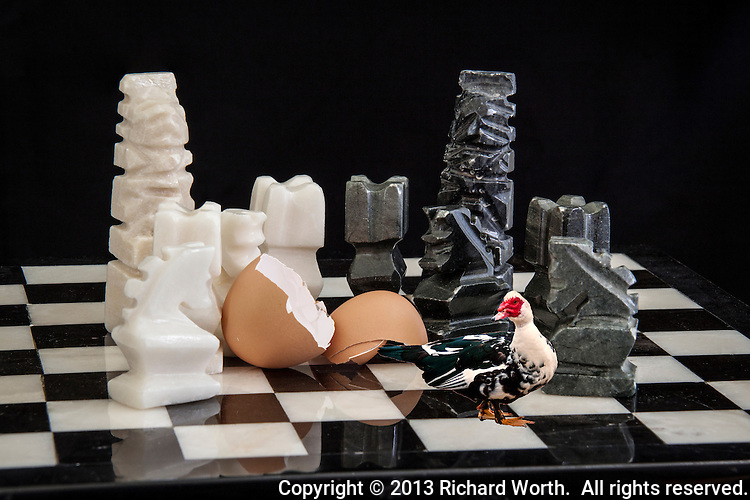 Aztec style kIngs, rooks and knights surround a broken shell on a black and white chess board while a Muscovy duck walks away.
