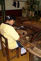 Woman rolling cigars in the Tabacalera Alberto Turrent  cigar factory near San Andres Tuxtla Veracruz, Mexico              .