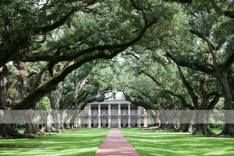"""Between New Orleans and Baton Rouge, and on the Mississipi River, lies Oak Alley Plantation, also known as the """"Grande Dame of the Great River Road"""".  Nearly 300 years old, live oak trees form a 1/4-mile canopy leading up to the classic Greek-revival style antebellum house."""
