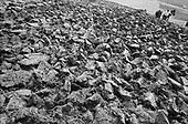 Bisericami, Transylvania<br /> Romania<br /> April 29, 1992<br /> <br /> Sowing seeds