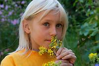 Kind riecht an Jakobs-Greiskraut, Jakobsgreiskraut, Greiskraut, Senecio jacobaea, Jacobea, Staggerwort