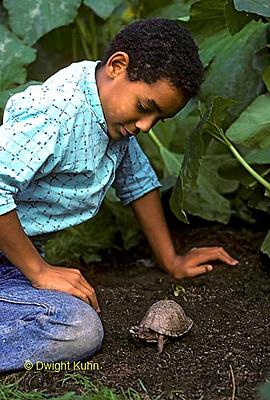 1R14-015z Minority Child with Box Turtle in garden.