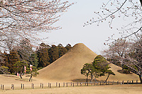 A mound created in imitation of Mount Fuji takes centre stage in the 17th century Suizen-ji garden in Japan