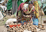 A woman left homeless by war sells potatoes in a camp in rebel-held territory in the eastern Congo. Families displaced by fighting between rebel Tutsi General Laurent Nkunda and the Congolese military took refuge in this camp they established in the shadow of a United Nations base in the village of Kiwanja. According to aid workers and human rights groups, rebel soldiers executed some 150 people here in a 24-hour period in early November. The killings took place half a mile from the UN base, yet the 120 UN peacekeepers, part of the largest UN peacekeeping contingent in the world, did not take any action to stop the violence. ...