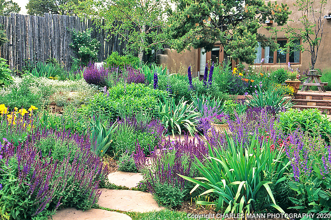 Catherine Clemens home garden _Santa Fe_MANN_0010.tif | Charles Mann Photography