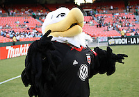 WASHINGTON, DC - AUGUST 4, 2012:  Talon, mascot of DC United before the game against the Columbus Crew during an MLS match at RFK Stadium in Washington DC on August 4. United won 1-0.
