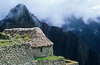 Amérique/Amérique du Sud/Pérou/Env de Cuzco : Le Machu Picchu - Détail habitat