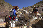 Pilgrimage of Native Wixaricas to their sacred place of Wirikuta, February 6, 2012. The scene is in climbing to the Cerro Quemado in San Luis Potosi state. Photo by Heriberto Rodriguez