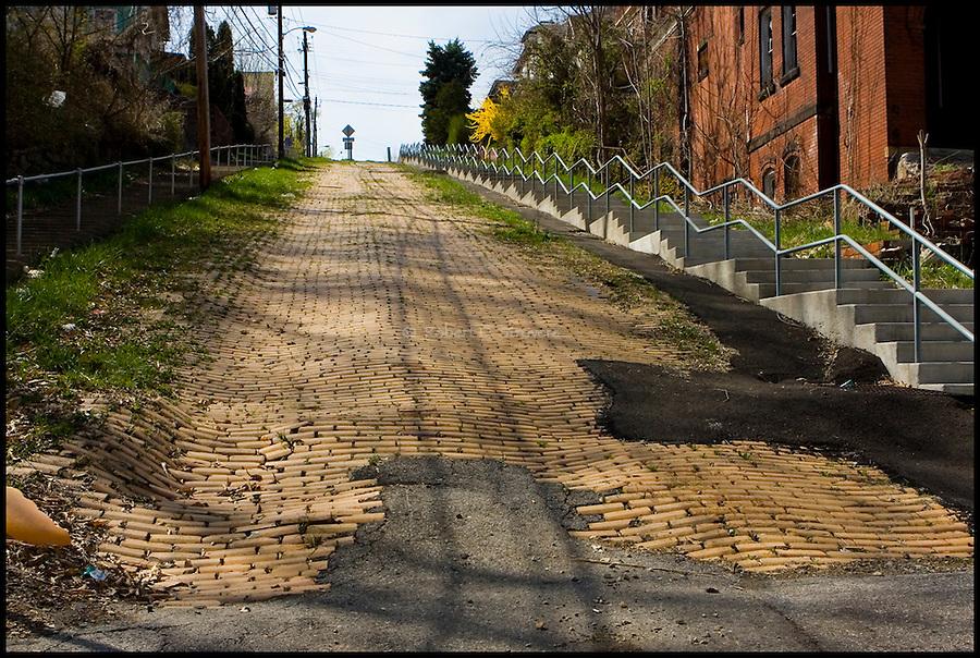 Pittsburgh's Neighborhoods - Donora Slopes