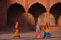 The Taj Mahal, Agra India