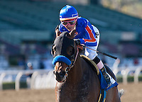 February 05, 2011. Game On Dude and Chantal Sutherland win the San Antonio Stakes(GII) at Santa Anita Park in Arcadia, CA.
