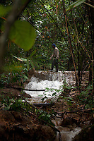 Photograph by Daniel J. Groshong/The Hummingfish Foundation