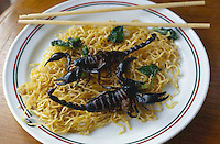 ca. September 1998, Bangkok, Thailand --- A Thai dish of fried black scorpions and noodles in Bangkok. --- Image by &copy; Owen Franken/CORBIS