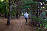 CONCORD, MA.-- September 20, 2009-- A network of trails padded with pine needles encircle the pond, providing a cushiony trail for runners.  CREDIT: JODI HILTON FOR THE NEW YORK TIMES