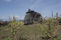 Indonesia - Sumatra - Aceh - Padang Seurahet - Remains of the dome of a mosque located in a village that was completely razed to the ground by the tsunami and has been relocated 7km inland.