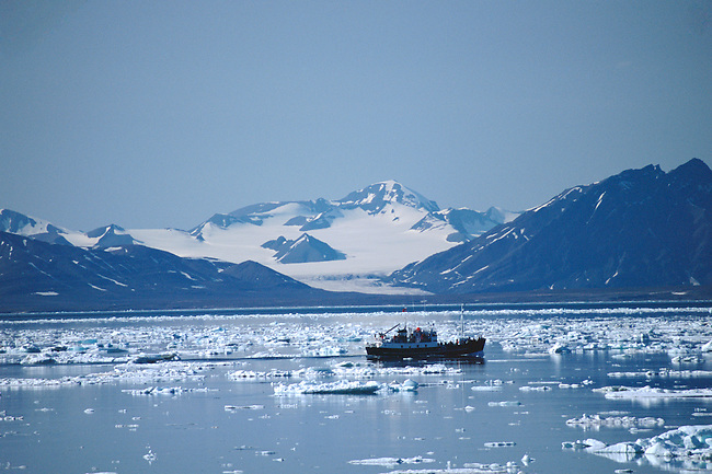 Tour boat returns to Longyearbyen through ice in the Isfjord. Svalbard