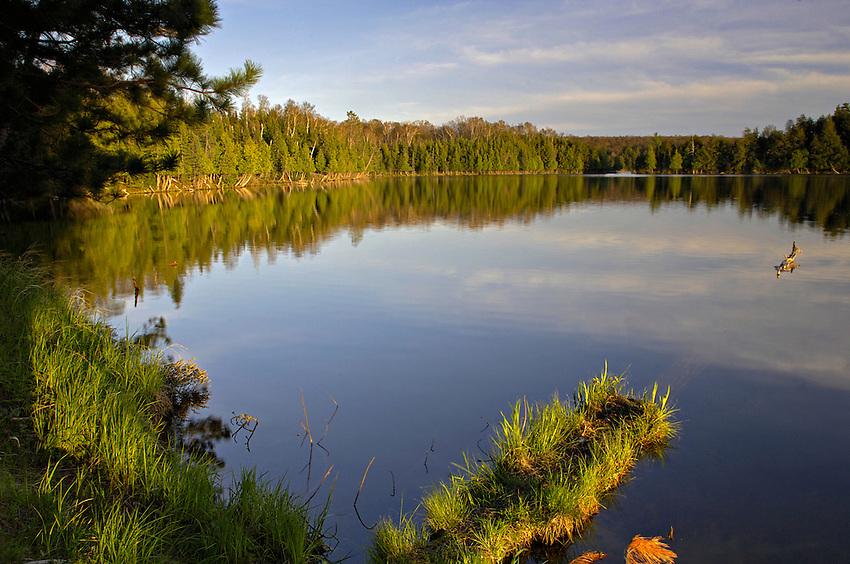 25 years later: Michigan wilderness is still an oasis | The ...