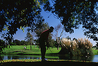 Golfer chipping from under tree, Golfing, Water Hazard, Lake, Silhouette
