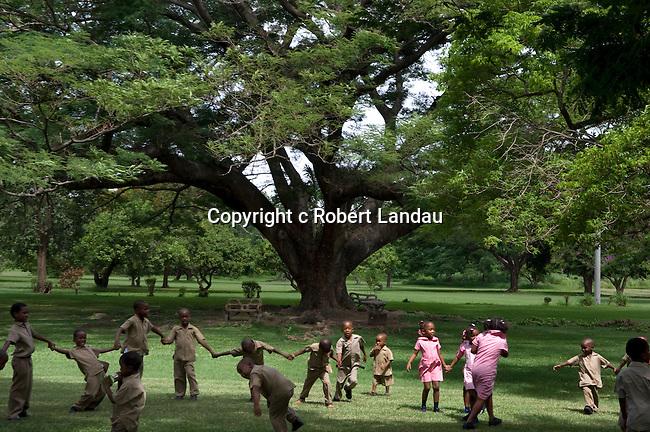 School kids playing in the  Botanical Gardens in Kingston
