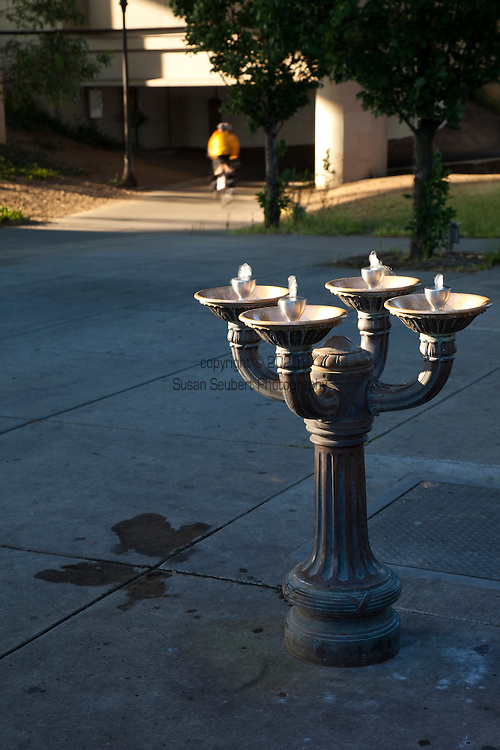 The Benson Bubblers, are ornate, bronze drinking-fountain bowls that provide free, fresh drinking water throughout downtown Portland.