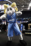 27 March 2015: UNC mascot Rameses. The University of North Carolina Tar Heels played the University of South Carolina Gamecocks at the Greensboro Coliseum in Greensboro, North Carolina in a 2014-15 NCAA Division I Women's Basketball Tournament regional semifinal game. South Carolina won the game 67-65.