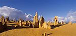 Sandstone formations in Nambung National Park.The Pinnacles. Western Australia. Australia.