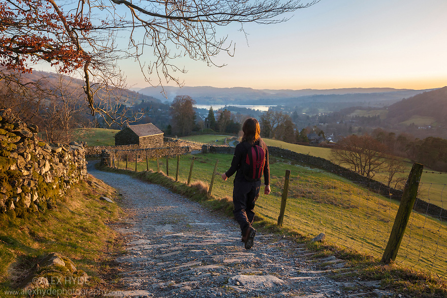 Female hiker walking down track into Ambleside in evening light, Lake District National Park, Cumbria, UK. February.