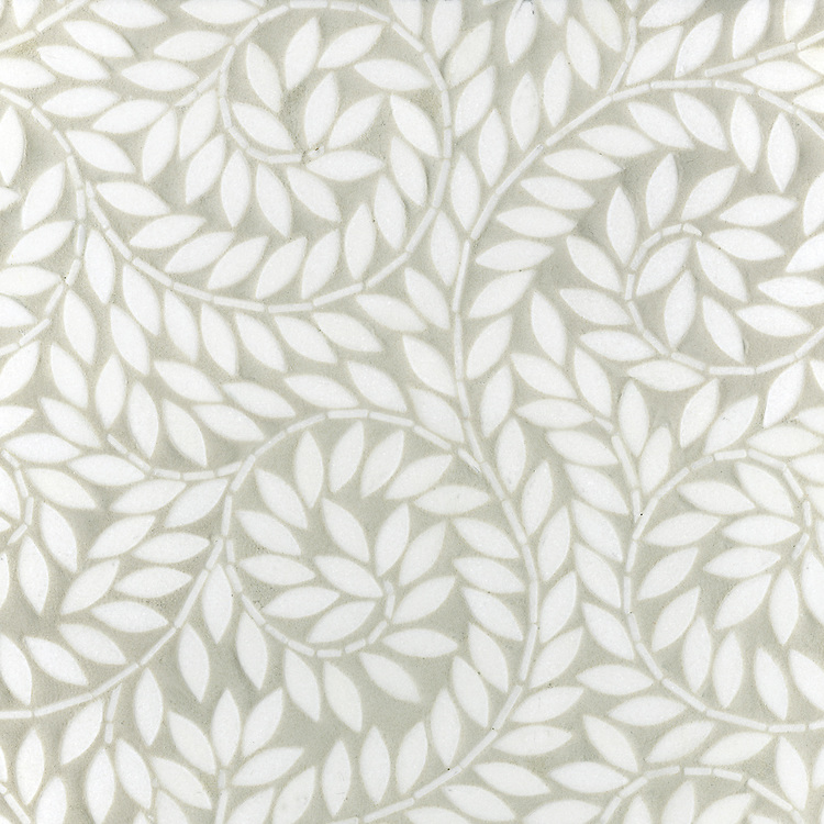 Name: Jacqueline Vines<br />