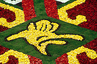 The Brussels flower carpet is designed of Begonias every second year in the central square - Grand Place. This year's theme was the kaledoscope.