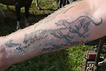 Priddy Horse Fair Somerset Uk 2009 Man with Lurcher Hare Coursing tattoo.