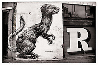 Street art by Roa and Eine, Shoreditch, East London