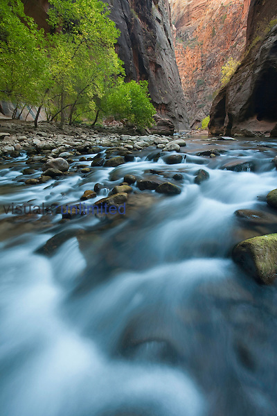 The Virgin River and Virgin River Canyon in Zion National Park, Utah, USA