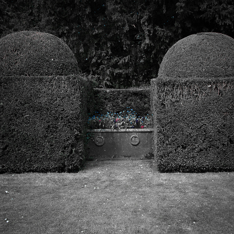 Box topiary and iron planter, Hinton Ampner, Hampshire.