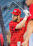 13 October 2016: Washington Nationals outfielder Bryce Harper takes batting practice prior to Game 5 of the NLDS against the Los Angeles Dodgers at Nationals Park in Washington, DC. The Dodgers edged out the Nationals 4-3, to take Game 5 of the Series, 3 games to 2, and move on to the National League Championship Series against the Chicago Cubs. Mandatory Credit: Ed Wolfstein Photo *** RAW (NEF) Image File Available ***