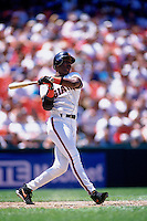 SAN FRANCISCO, CA - Barry Bonds of the San Francisco Giants in action during a game at Candlestick Park in San Francisco, California in 1995. Photo by Brad Mangin