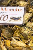 Italie, V&eacute;n&eacute;tie, Venise:  March&eacute; du Rialto, sestiere de San Polo -  La Pescheria , march&eacute; aux poissons : le moeche petit crabe v&eacute;nitien<br />   // Italy, Veneto, Venice:  Rialto market, San Polo sestiere