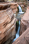 Grand Canyon National Park, AZ.Unnamed waterfalls on Deer Creek spill over Tapeats sandstone at the head of the Deer Creek Narrows