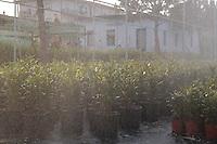 Cooperativa sociale di tipo B.La fabbrica dei fiori si occupa di coltivazione di piante da fiore in serra e manutenzione parchi e giardini.E' diretta all'inserimento lavorativo di giovani portatori di disagio mentale.Social Cooperative type B. The factory takes care of the flowers of growing flowering plants in the greenhouse and maintained parks and gardens. Their work is the inclusion of young people with mental disorders.