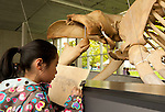 A young girl draws a scetch of the new blue whale exhibit at the Beaty Biodiversity Museum located on the campus of The University Of British Columbia Vancouver BC, May 22nd 2010.  This was the first of five free summer previews of the exhibit open to the public.  The skeleton is the largest in Canada 25-meters long, and largest in the world suspended without an external armature.  The blue whale is the largest animal to have ever live on earth..The Canadian Press Images/ Gus Curtis
