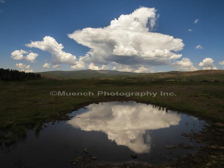 Summer thunderhead forming over Baldy Peak in the White Mountains Arizona