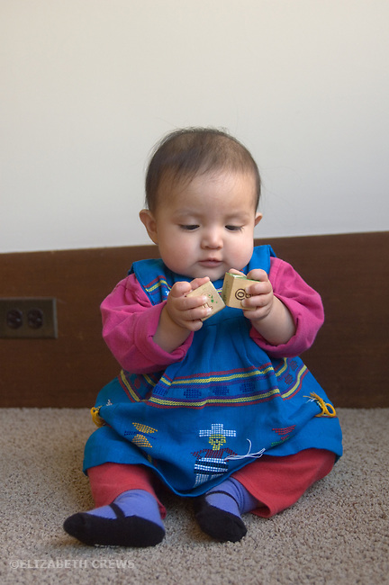 Berkeley CA Eight-month-old Guatemalan girl holding two blocks and practicing banging them together  MR