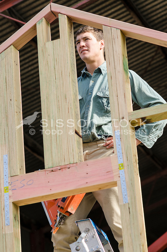 Young male builder constructing a wooden house frame inside a shed, Queenstown, New Zealand - stock photo, canvas, fine art print