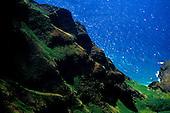 Aerial view of Kauai's Na Pali coastline with zodiac tour boats rounding the point