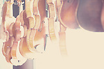 violins hanging in a sunlit window