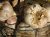 garlic bulbs<br /> <br /> ajo<br /> <br /> Knoblauchknollen<br /> <br /> bot.: Allium Sativum