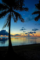 Sunset with the moon and a silhouette of palm trees at Amuri beach, Aitutaki Island, Cook Islands.