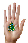 Christmas tree pattern painted on a palm isolated on white background