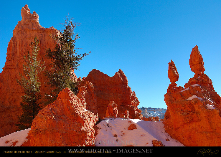 Rearing Horse Hoodoo Formation in Winter, Queen's Garden Trail, Bryce Canyon National Park, Utah